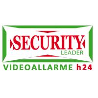 logo security